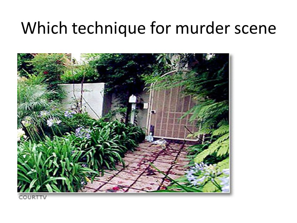 Which technique for murder scene