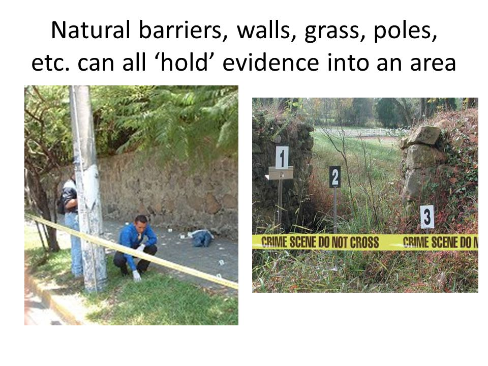 Natural barriers, walls, grass, poles, etc