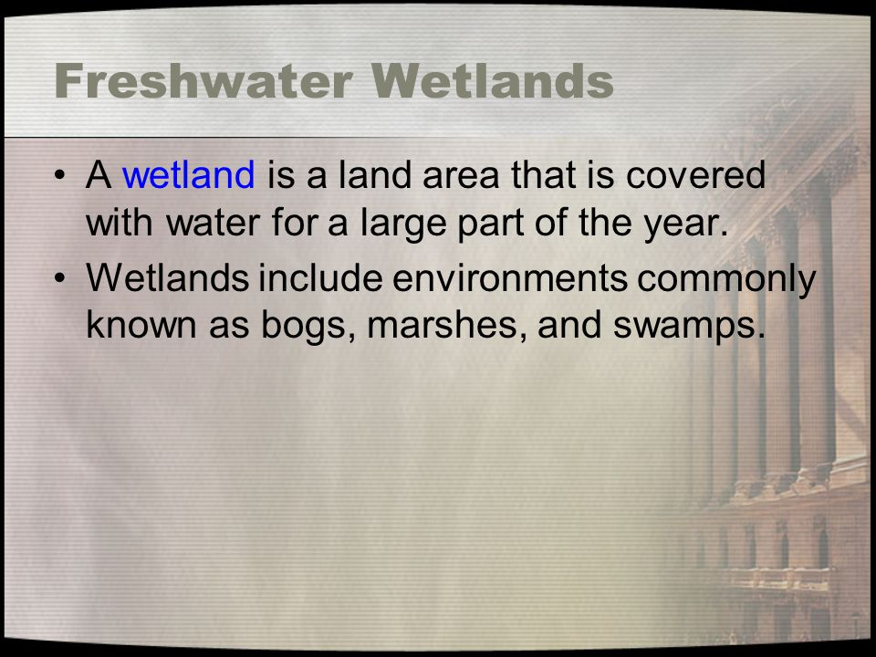 Freshwater Wetlands A wetland is a land area that is covered with water for a large part of the year.