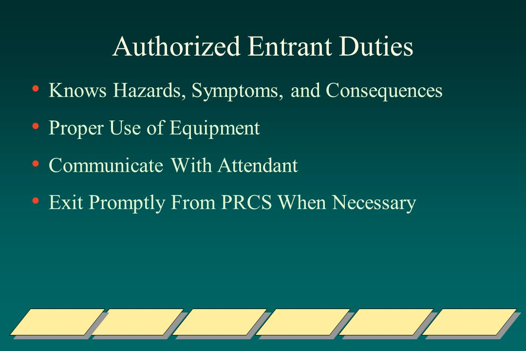 Authorized Entrant Duties