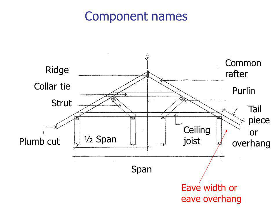 Component names Common rafter Ridge Collar tie Strut Purlin Tail piece