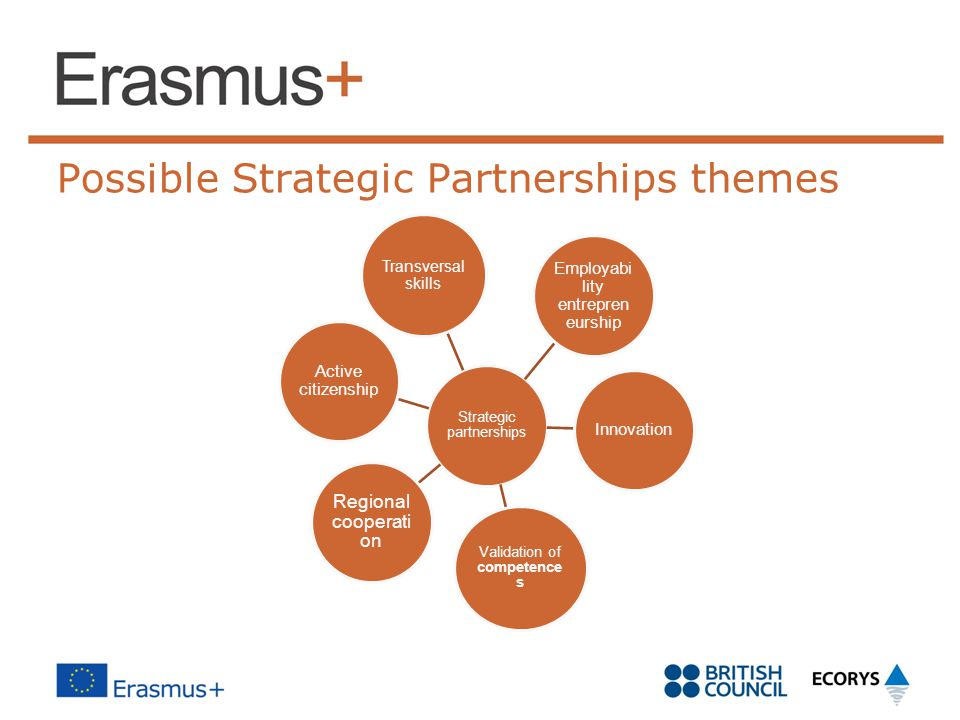 Possible Strategic Partnerships themes