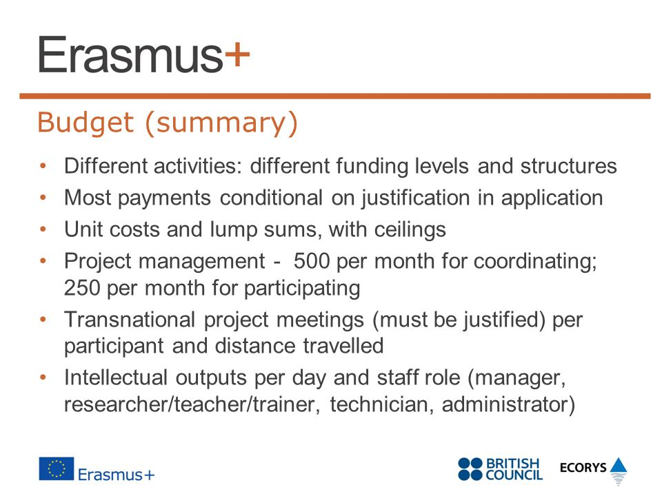 Budget (summary) Different activities: different funding levels and structures. Most payments conditional on justification in application.