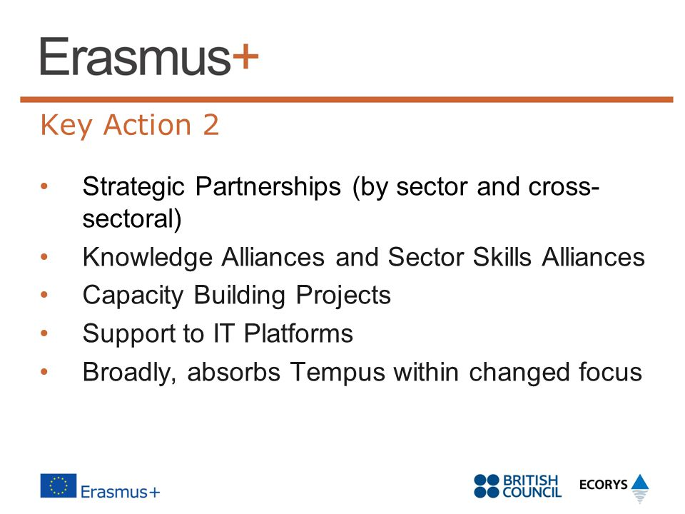 Key Action 2 Strategic Partnerships (by sector and cross- sectoral)