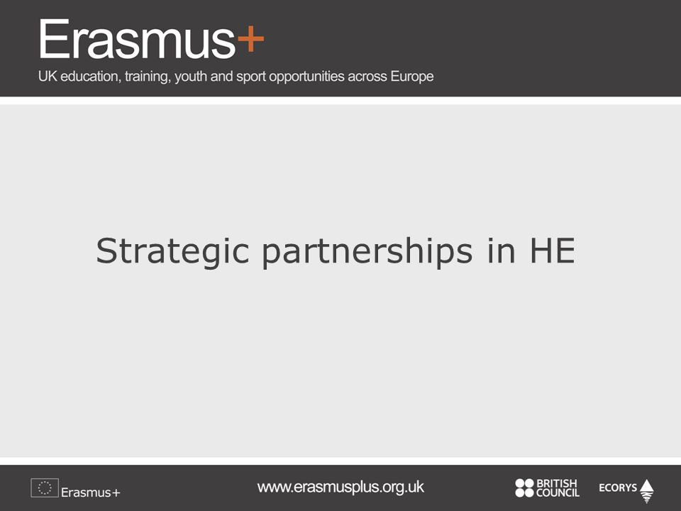Strategic partnerships in HE