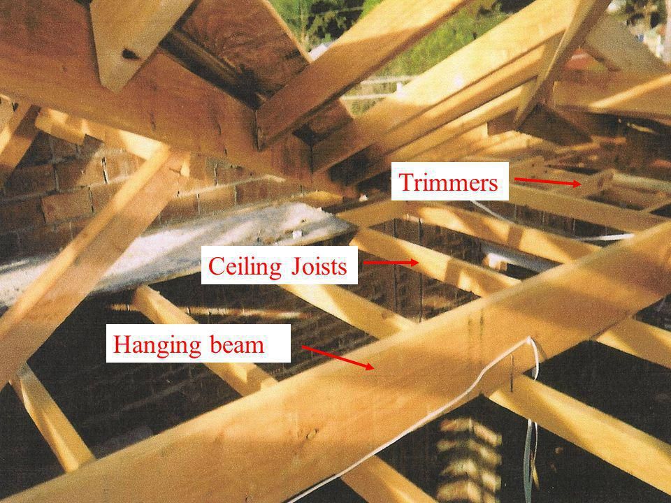 Trimmers Ceiling Joists Hanging beam