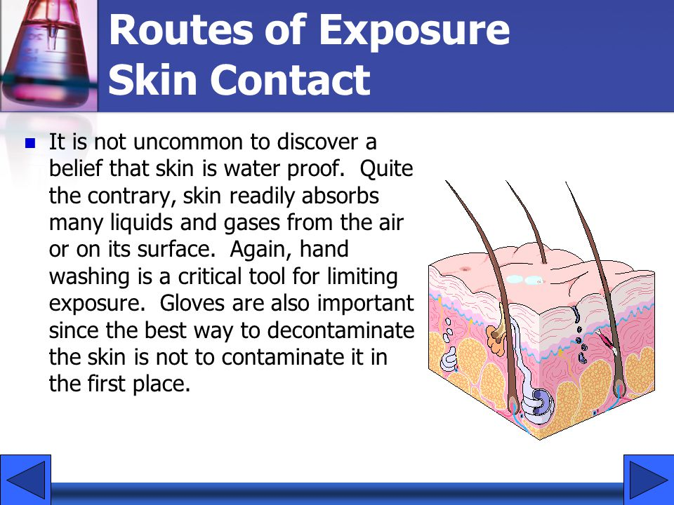 Routes of Exposure Skin Contact