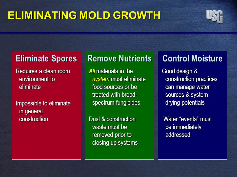 ELIMINATING MOLD GROWTH