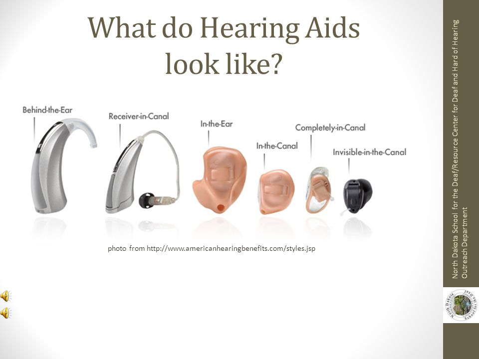 What do Hearing Aids look like