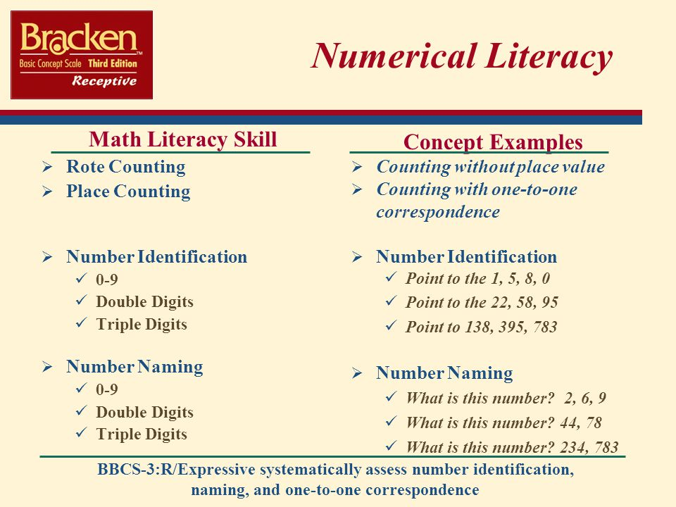 Numerical Literacy Math Literacy Skill Concept Examples Rote Counting
