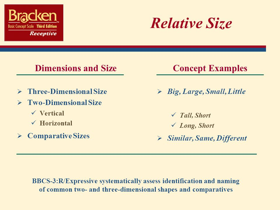 Relative Size Dimensions and Size Concept Examples