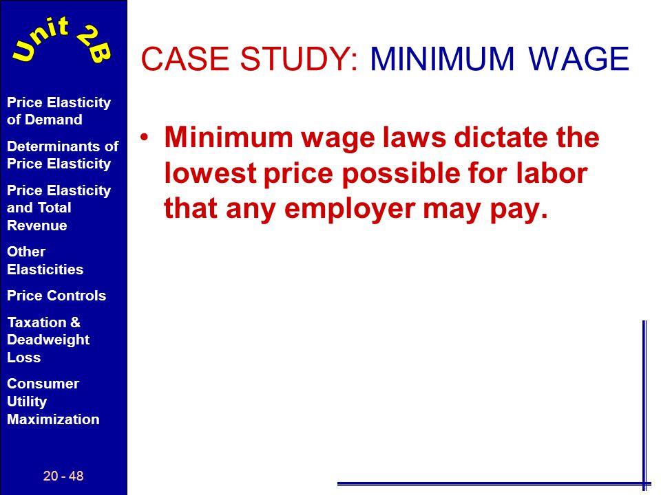 CASE STUDY: MINIMUM WAGE