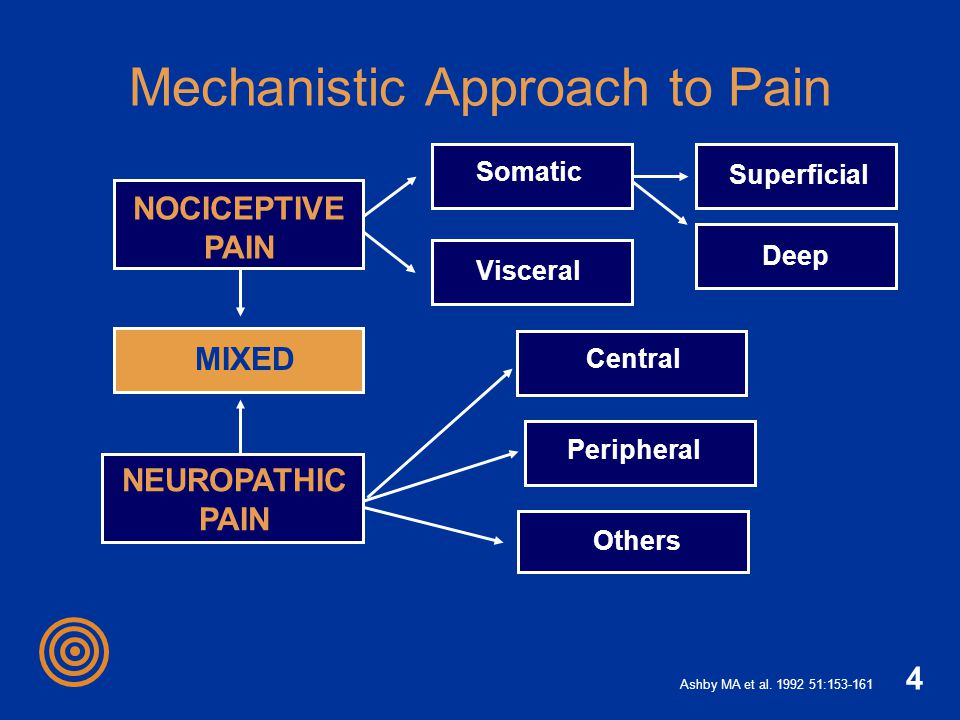 Mechanistic Approach to Pain