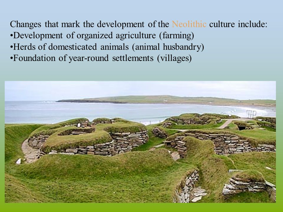 Changes that mark the development of the Neolithic culture include: