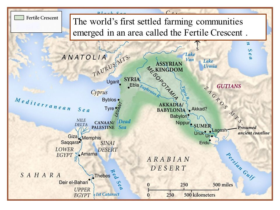 The world's first settled farming communities emerged in an area called the Fertile Crescent .