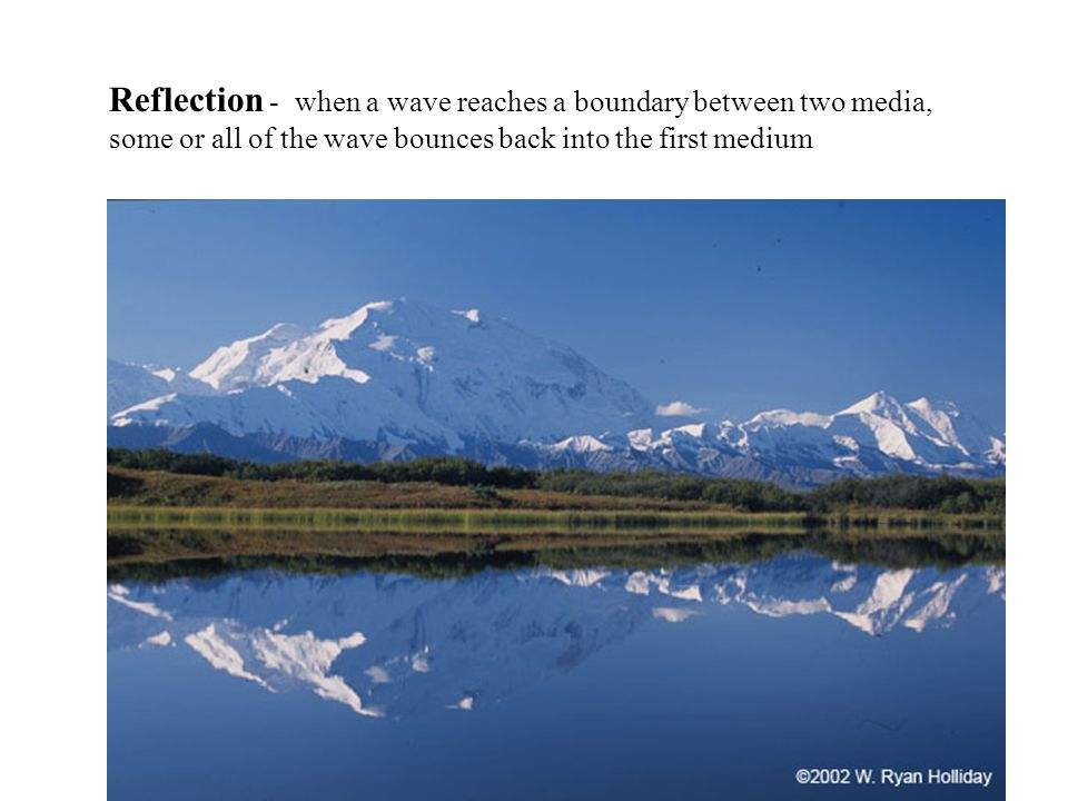Reflection - when a wave reaches a boundary between two media, some or all of the wave bounces back into the first medium