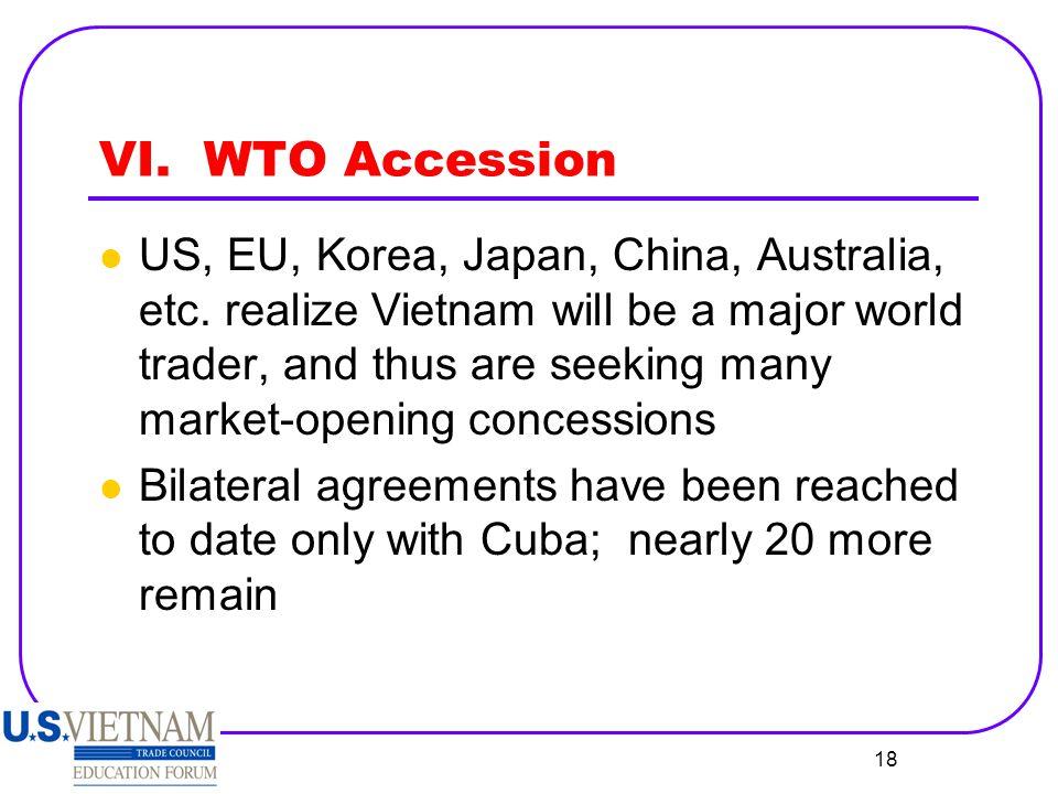 VI. WTO Accession