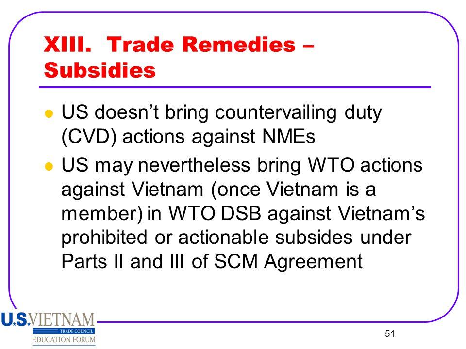 XIII. Trade Remedies – Subsidies