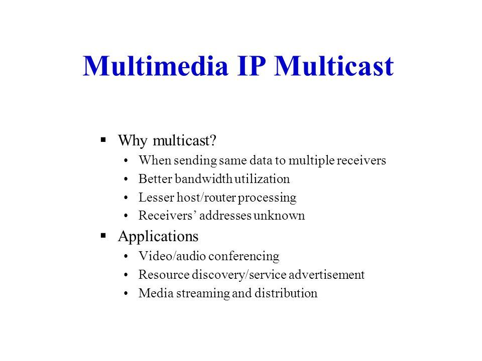 Multimedia IP Multicast