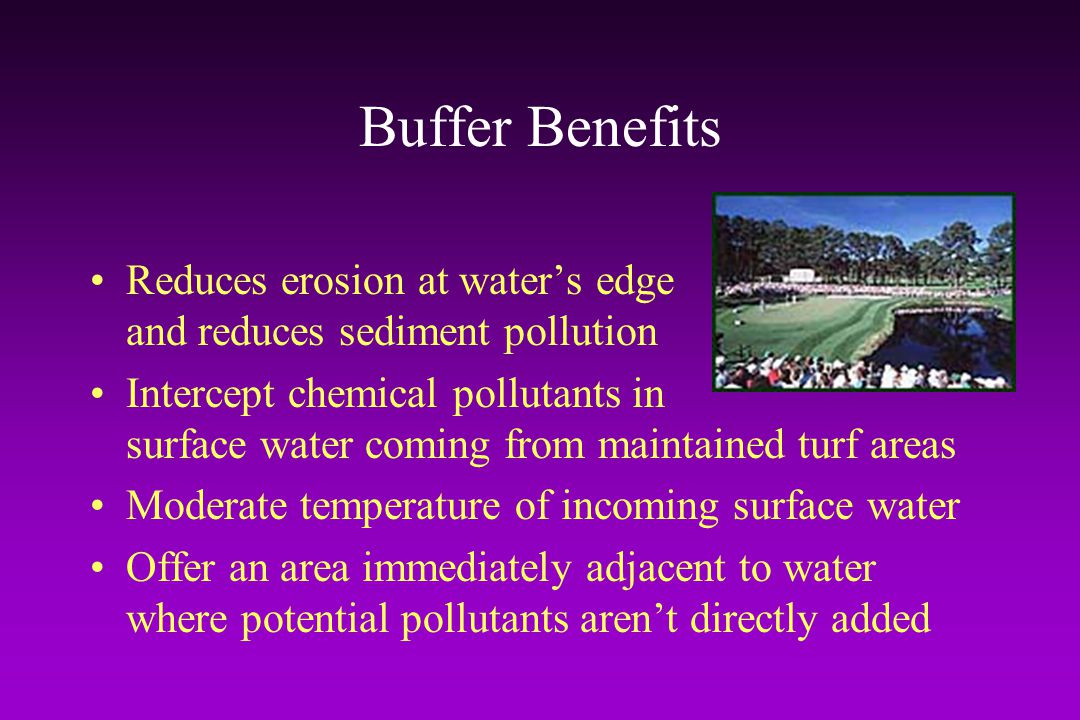 Buffer Benefits Reduces erosion at water's edge and reduces sediment pollution.