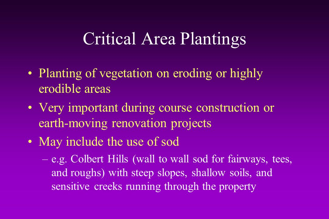 Critical Area Plantings