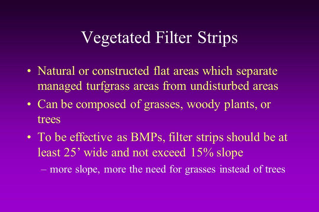 Vegetated Filter Strips