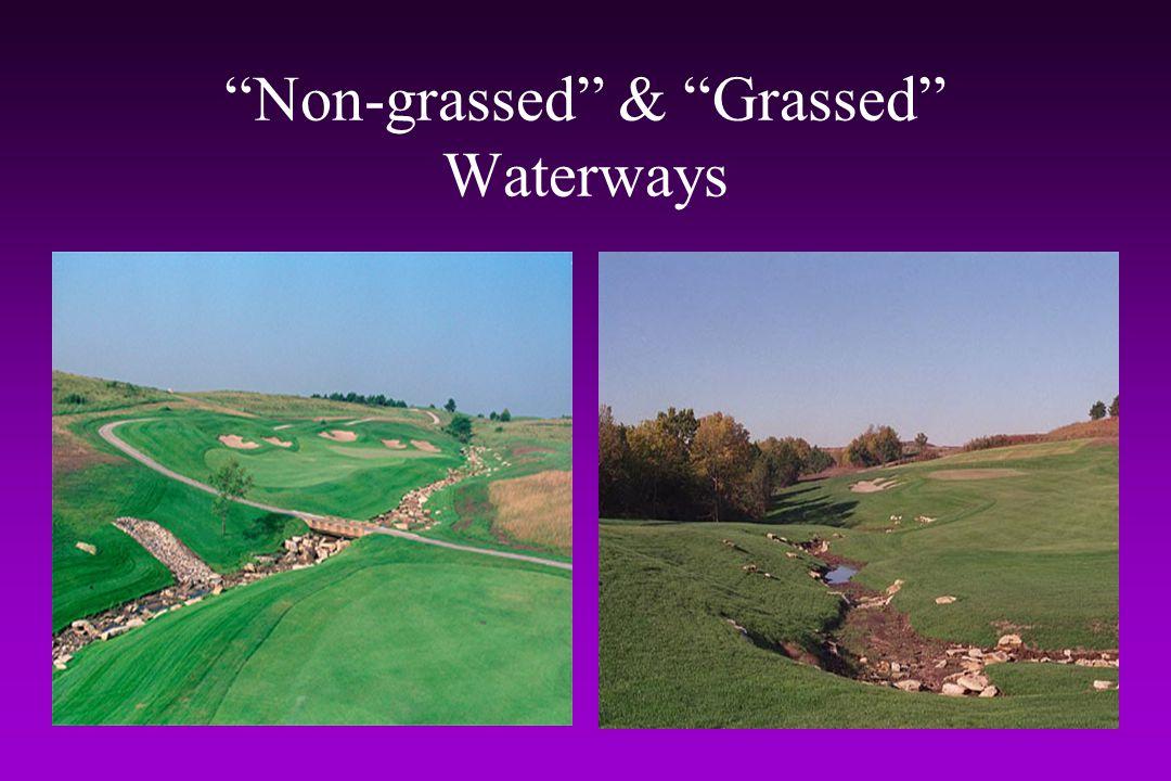 Non-grassed & Grassed Waterways