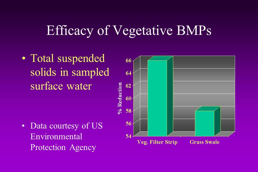 Efficacy of Vegetative BMPs