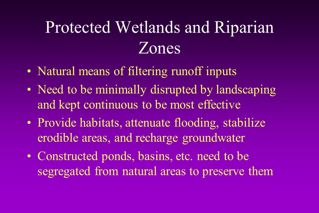 Protected Wetlands and Riparian Zones
