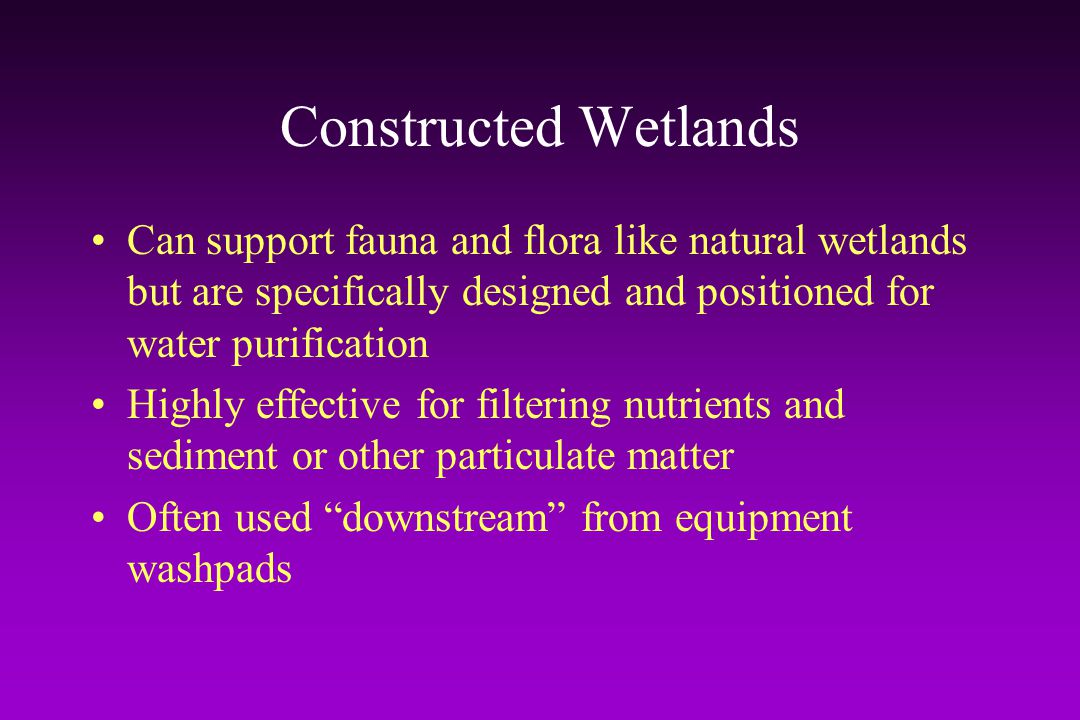 Constructed Wetlands Can support fauna and flora like natural wetlands but are specifically designed and positioned for water purification.