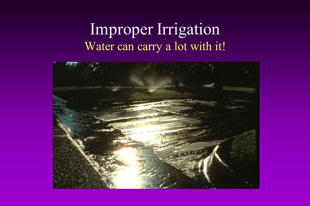 Improper Irrigation Water can carry a lot with it!