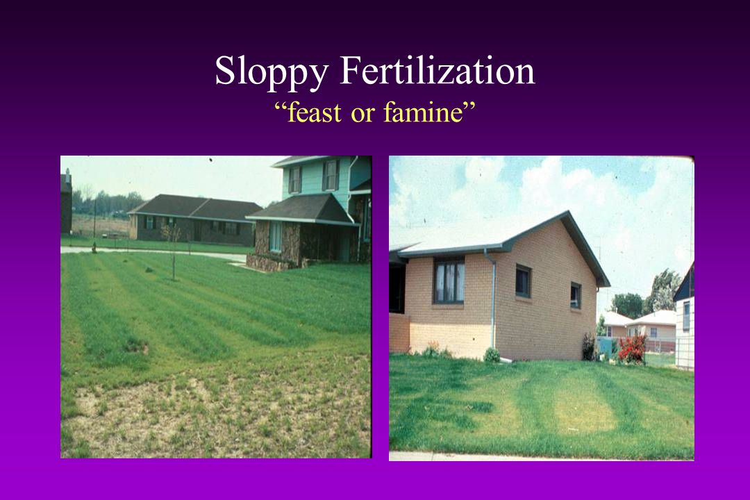 Sloppy Fertilization feast or famine