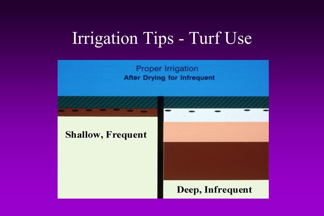 Irrigation Tips - Turf Use
