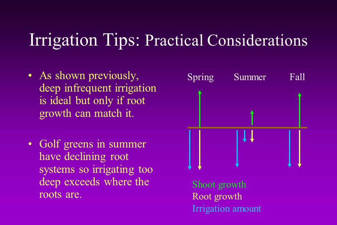 Irrigation Tips: Practical Considerations