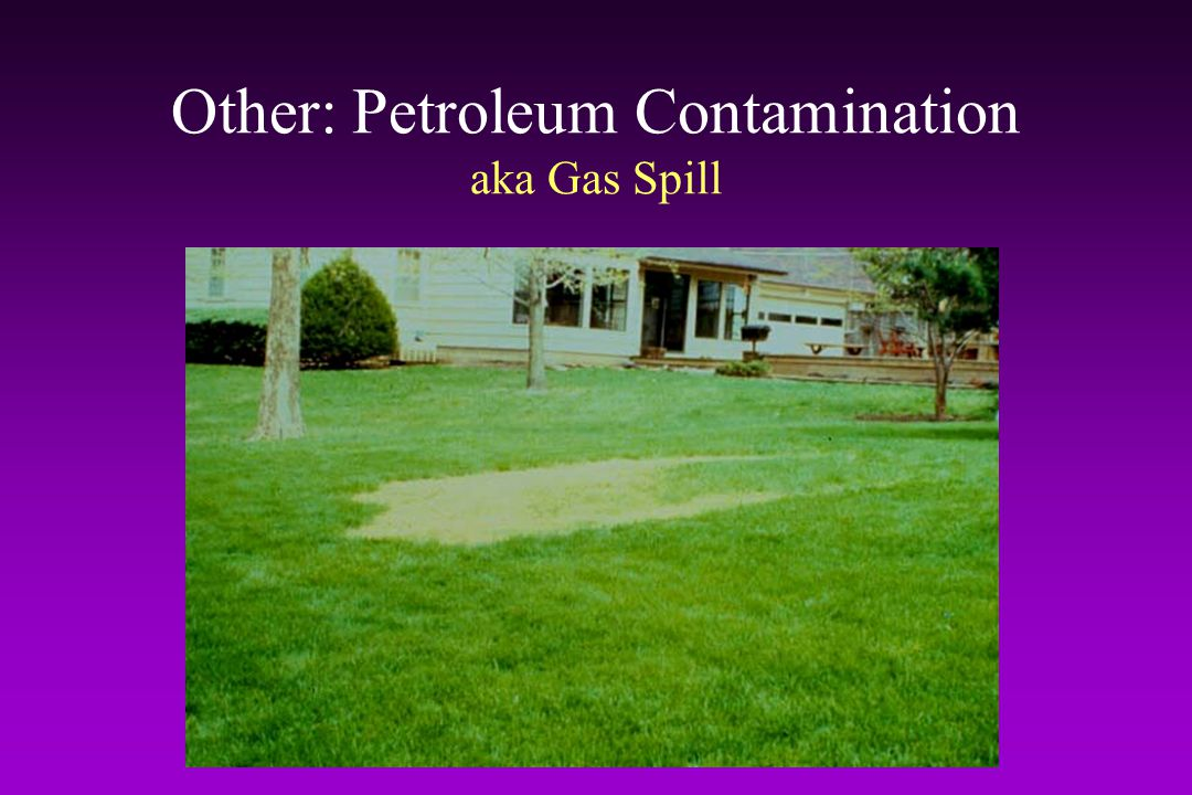 Other: Petroleum Contamination aka Gas Spill