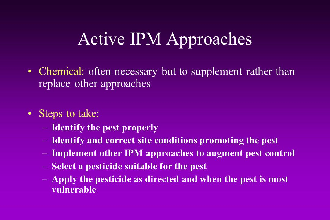 Active IPM Approaches Chemical: often necessary but to supplement rather than replace other approaches.
