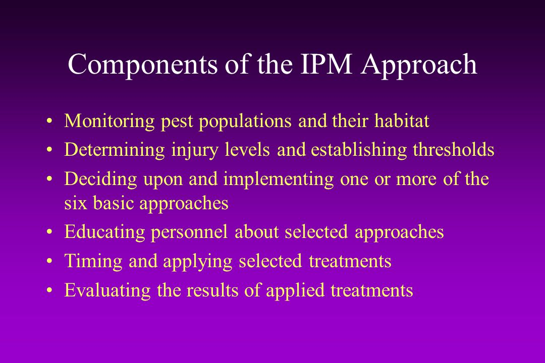 Components of the IPM Approach