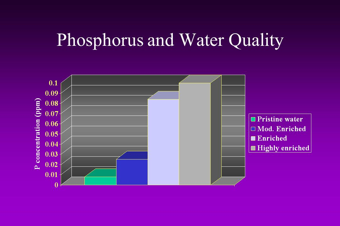 Phosphorus and Water Quality