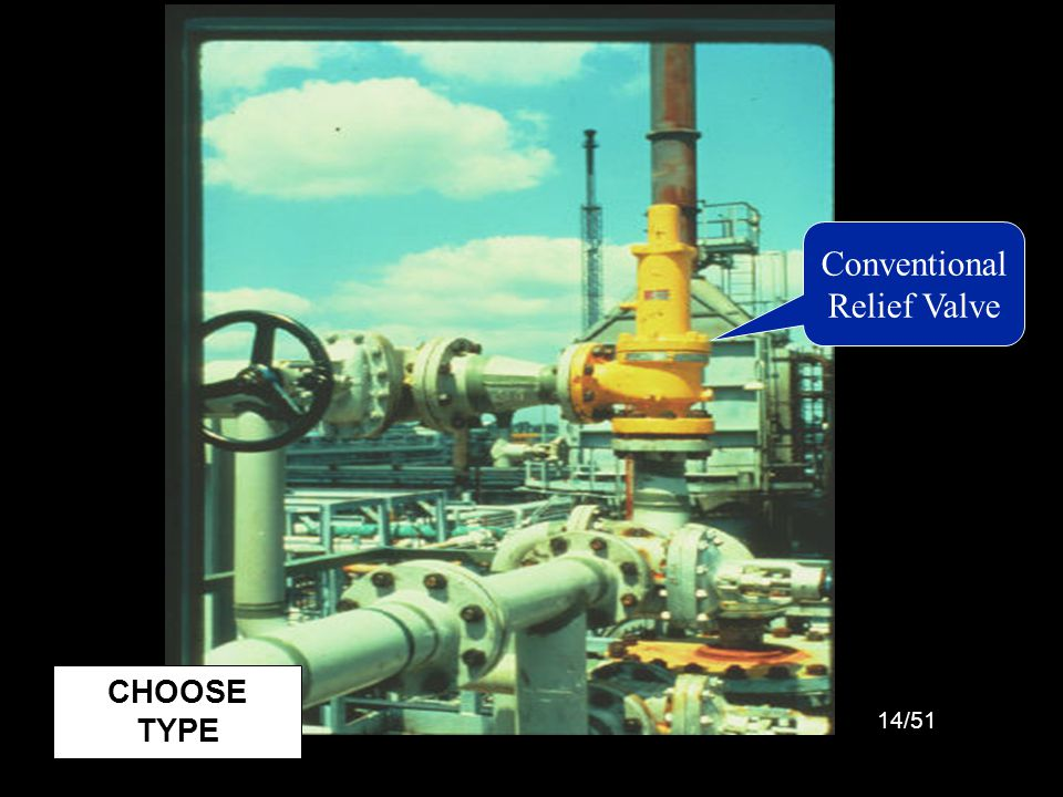 Picture: Conventional Relief Valve