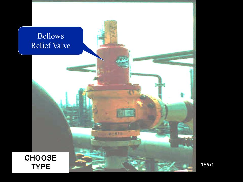 Picture: Bellows Relief Valve