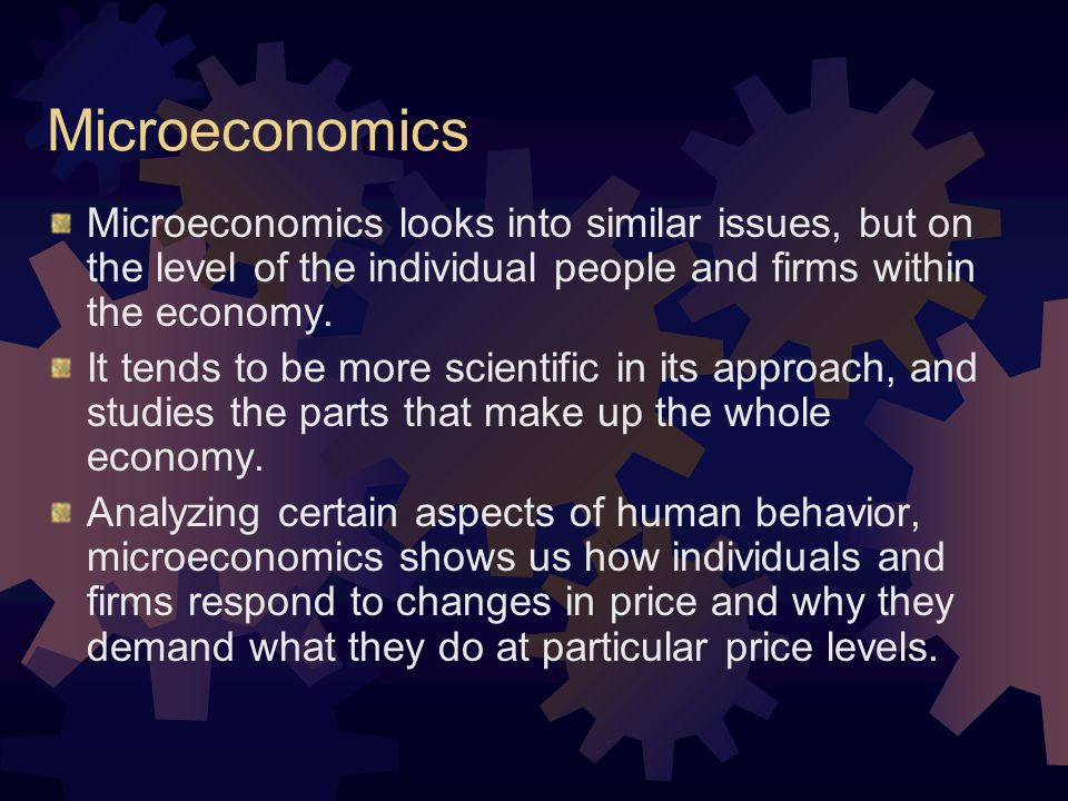 Microeconomics Microeconomics looks into similar issues, but on the level of the individual people and firms within the economy.
