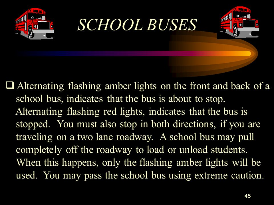 SCHOOL BUSES Alternating flashing amber lights on the front and back of a. school bus, indicates that the bus is about to stop.