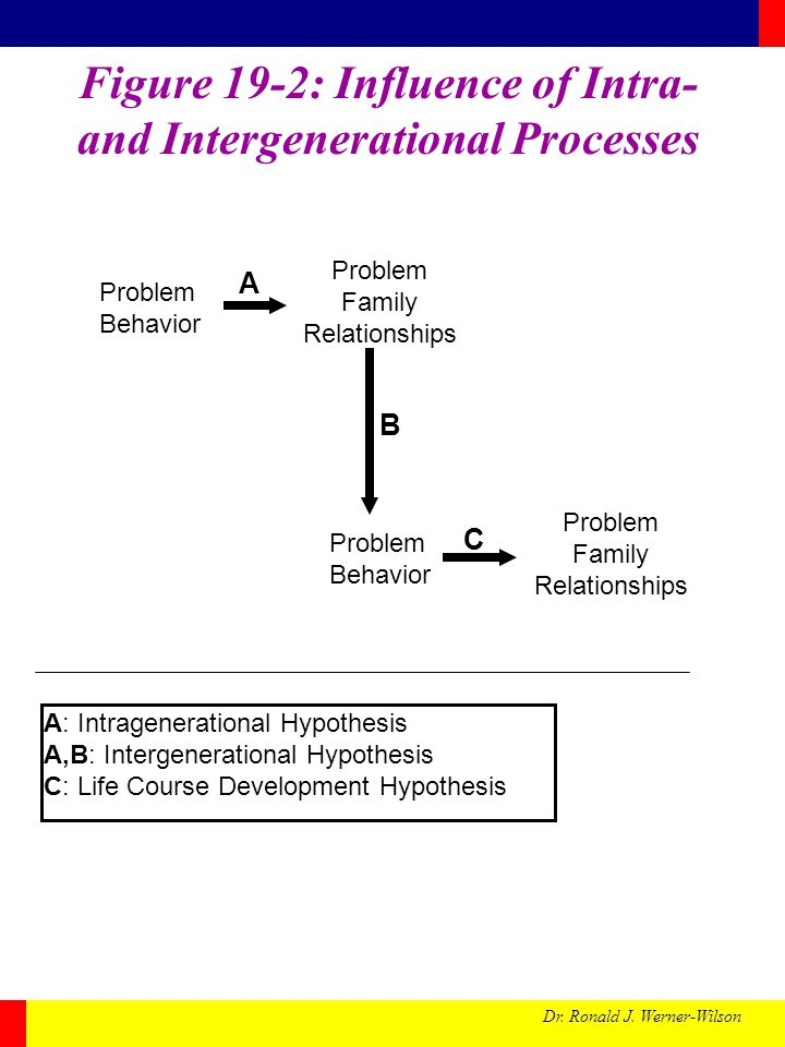 Figure 19-2: Influence of Intra- and Intergenerational Processes