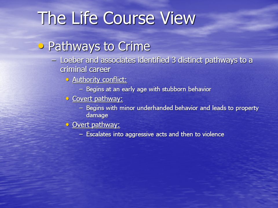 The Life Course View Pathways to Crime