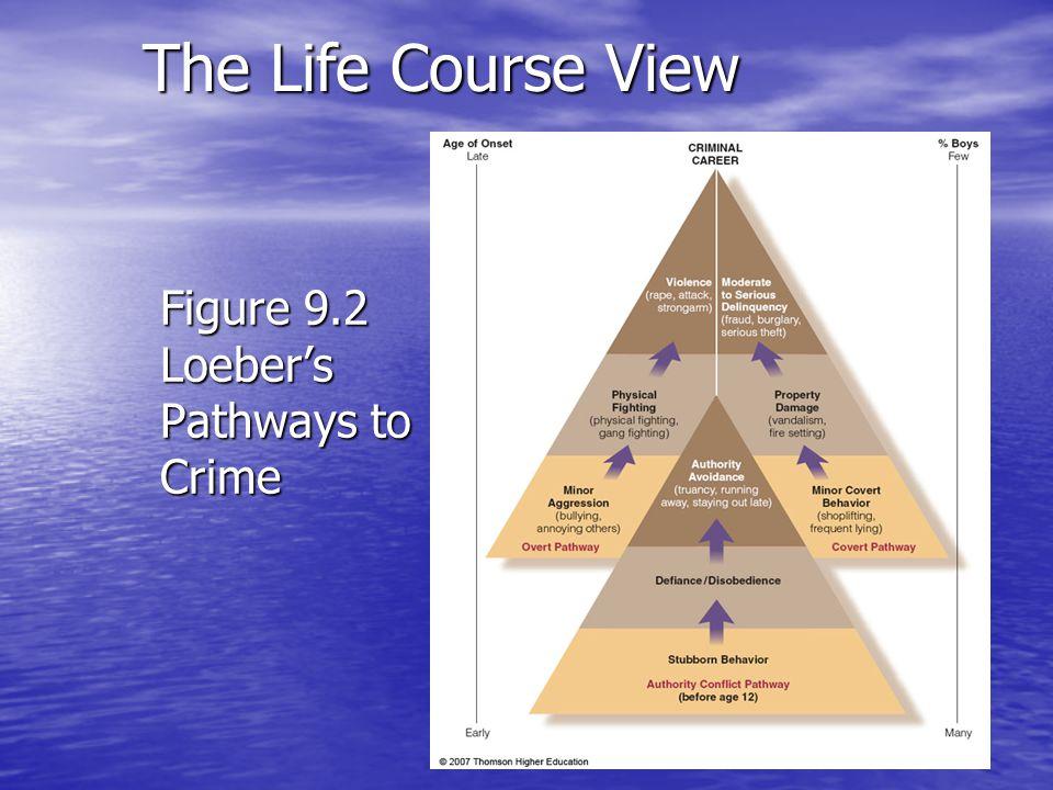 Figure 9.2 Loeber's Pathways to Crime