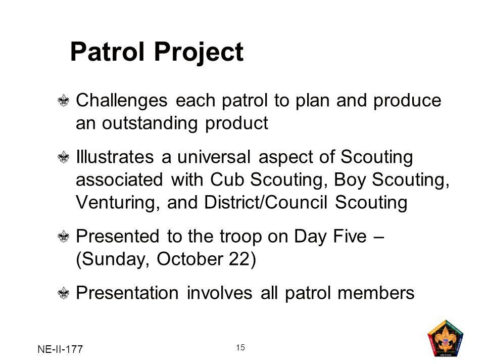 Patrol Project Challenges each patrol to plan and produce an outstanding product.