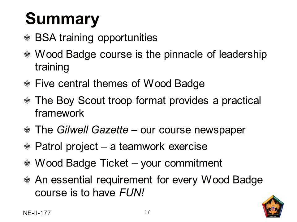 Summary BSA training opportunities