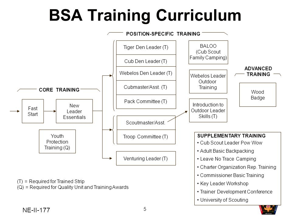 BSA Training Curriculum