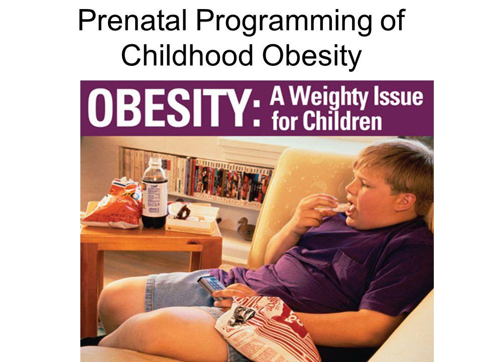 Prenatal Programming of Childhood Obesity