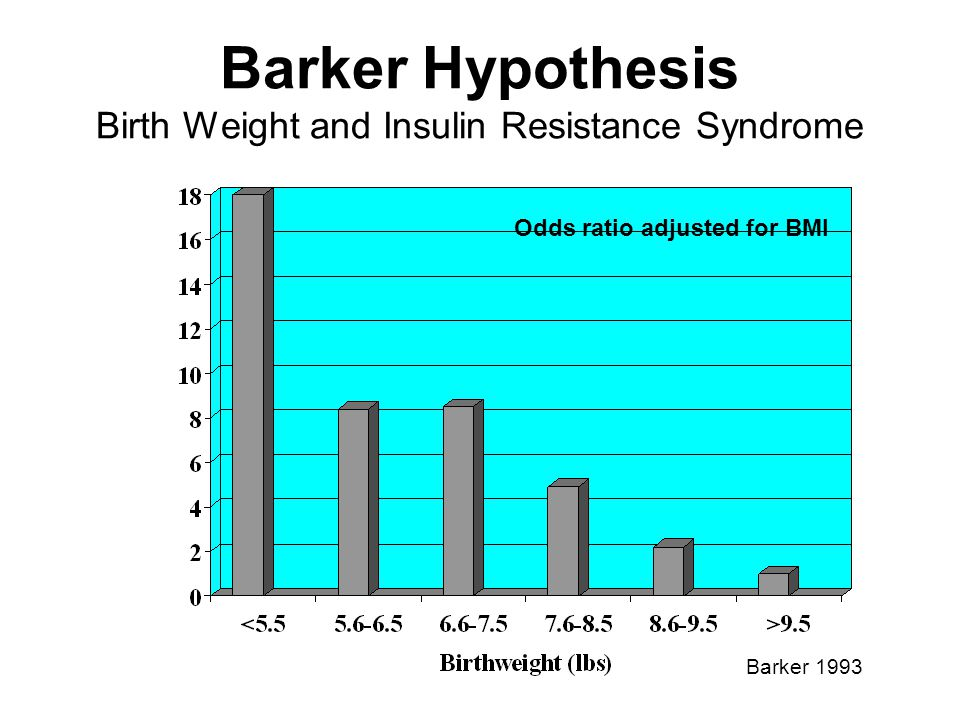 Barker Hypothesis Birth Weight and Insulin Resistance Syndrome